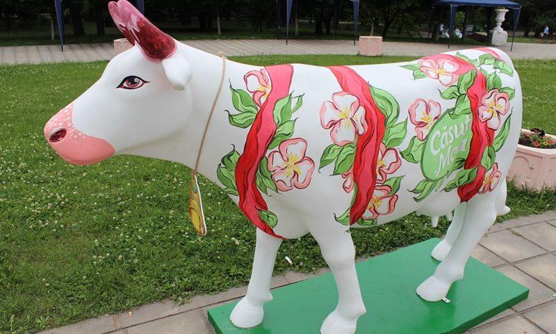 Фестиваль Коров