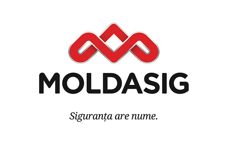 MOLDASIG_800X480