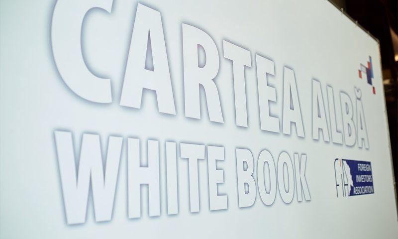 Белая Книга FIA 2017